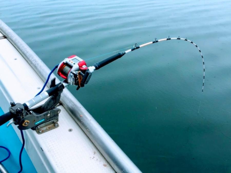 釣り魅力さまざま