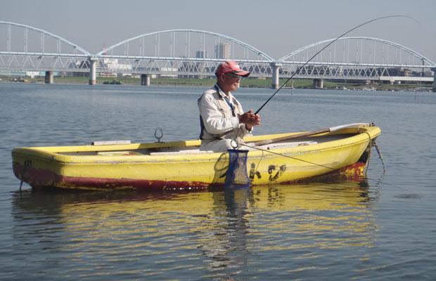 ハゼ釣り江戸川